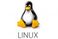 LINUX COMMAND GUIDE  - Comandi avanzati tastiera