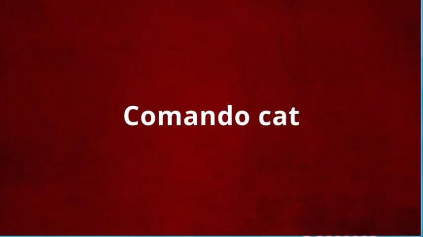 LINUX: Comando CAT